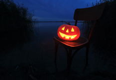 Halloween pumpkin. In the Forest Stock Photo