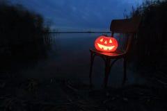 Halloween pumpkin. In the Forest Stock Photos