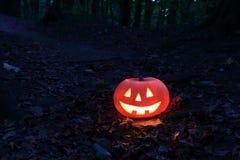 Halloween pumpkin Royalty Free Stock Image