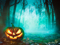 Halloween pumpkin in forest Royalty Free Stock Photos