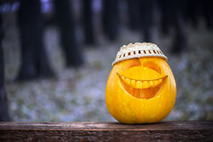 Halloween pumpkin in the forest. Halloween pumpkin in the dark forest Stock Photography