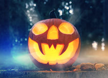 Halloween pumpkin in a forest at night. Halloween pumpkin on leaves in a forest at night Stock Photo
