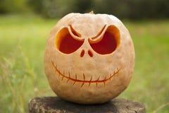 Halloween pumpkin front faced. Halloween pumpkin on a wooden stump surrounded by green grass Stock Photo