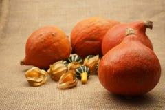 Halloween pumpkin and fruits Stock Photos