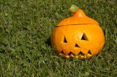 Halloween pumpkin on the grass. Halloween pumpkin on the garden lawn Royalty Free Stock Image