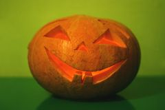 Halloween pumpkin on green. Background Royalty Free Stock Images