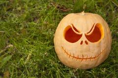 Halloween pumpkin on green grass. Close up Stock Photos