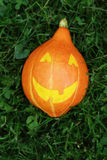 Halloween pumpkin on green grass Stock Photos