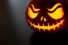 Halloween Pumpkin. On grey background with copyspace stock photography