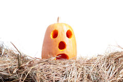 Halloween pumpkin on the hay on a white background isolated Stock Photos