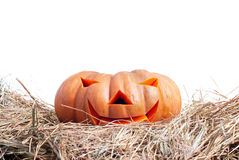 Halloween pumpkin on the hay on a white background isolated Stock Images