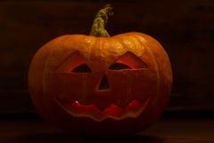 Halloween pumpkin head jack Stock Image