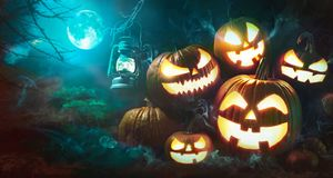 Halloween pumpkin head jack lantern with burning candles. In scary deep night forest stock photo