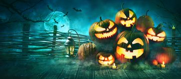 Halloween pumpkin head jack lantern with burning candles. In scary deep night forest royalty free stock photos