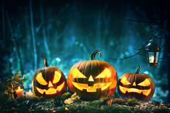 Halloween pumpkin head jack lantern with burning candles. In scary deep night forest stock images