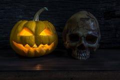 Halloween pumpkin head jack lantern with human skull Stock Image