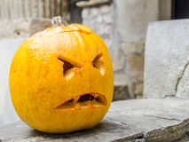 Halloween Pumpkin Head Royalty Free Stock Image