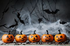 Halloween pumpkin heads with funny smile and spooky decoration on dark wood. Stock Photos