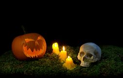 Halloween pumpkin, human skull and candles glowing in the dark o royalty free stock photography