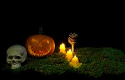 Halloween pumpkin, human skull, goblet and candles glowing in th royalty free stock photo