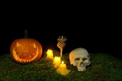 Halloween pumpkin, human skull, goblet and candles glowing in th royalty free stock image