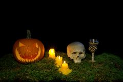 Halloween pumpkin, human skull, goblet and candles glowing in th royalty free stock photos