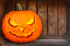 Halloween pumpkin inside an old wooden crate Royalty Free Stock Image