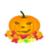 Halloween pumpkin isolated Royalty Free Stock Photos