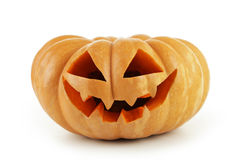 Halloween Pumpkin isolated on white background. Stock Images