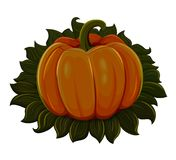 Halloween pumpkin. Isolated on white background Stock Photography