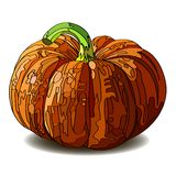 Halloween Pumpkin isolated on white. Royalty Free Stock Photo