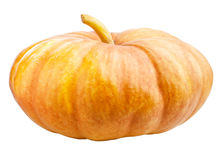 Halloween Pumpkin Isolated Royalty Free Stock Photo