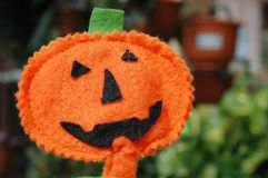 Halloween Pumpkin Jack O-lantern Stock Image