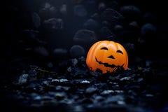 Halloween pumpkin, jack o lantern Stock Photos