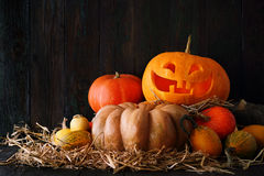 Halloween pumpkin jack-o-lantern Royalty Free Stock Photography