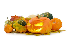 Halloween pumpkin Jack O'Lantern Royalty Free Stock Photos