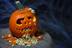 Halloween pumpkin jack-o-lantern Stock Images