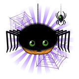 Halloween pumpkin Jack o lantern in spider costume Royalty Free Stock Photography