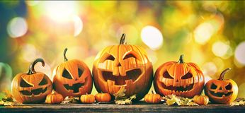 Halloween pumpkin jack o lanterns. With funny faces stock image