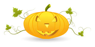 Halloween pumpkin lantern Royalty Free Stock Photo