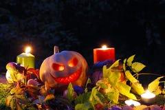 Halloween pumpkin lantern Stock Photos