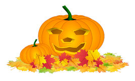 Halloween pumpkin in leafs isolated Stock Images