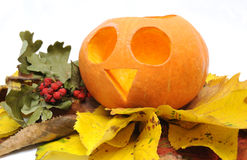 Halloween Pumpkin and leaves. Royalty Free Stock Photography