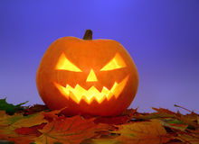 Halloween pumpkin on leaves Royalty Free Stock Photography