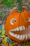Halloween pumpkin Royalty Free Stock Images