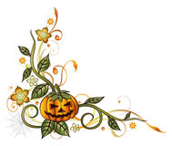 Halloween, pumpkin, leaves. Colorful halloween tendril with pumpkin and flowers Royalty Free Stock Photography