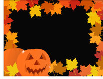 Halloween pumpkin leaves frame Royalty Free Stock Images