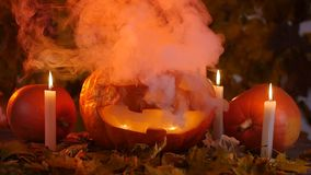 Halloween pumpkin and candles on leaves and smoke stock footage