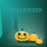 Halloween pumpkin in moon light in forest Royalty Free Stock Photo