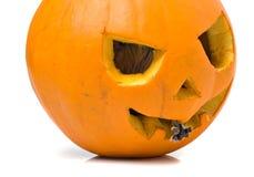 Halloween pumpkin mouse Stock Photo